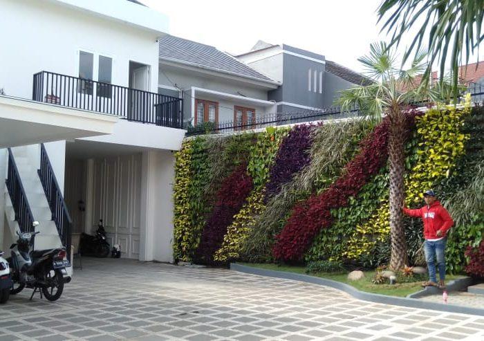 Jasa pembuatan taman vertical (1)